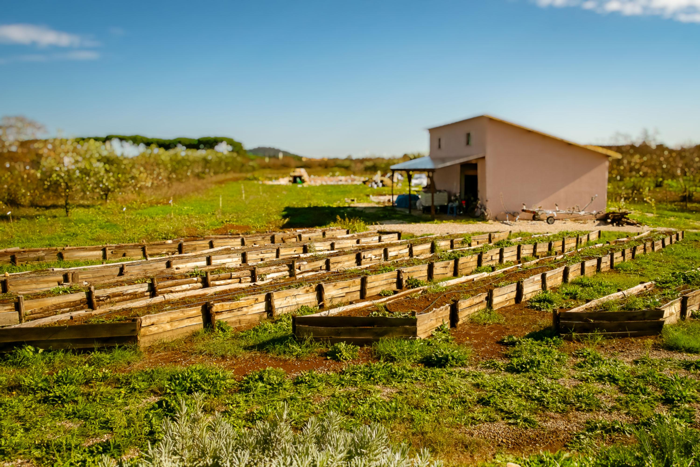 Il Giardino di Proserpina - gli orti sinergici - agricoltura biologica - Manziana - Roma