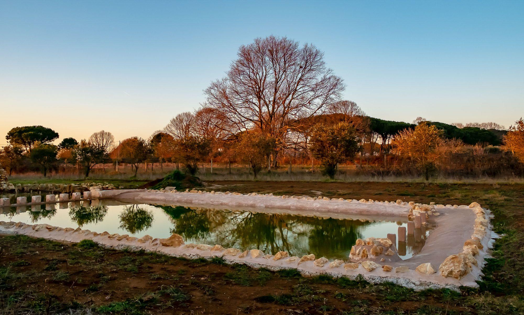 Il Giardino di Proserpina