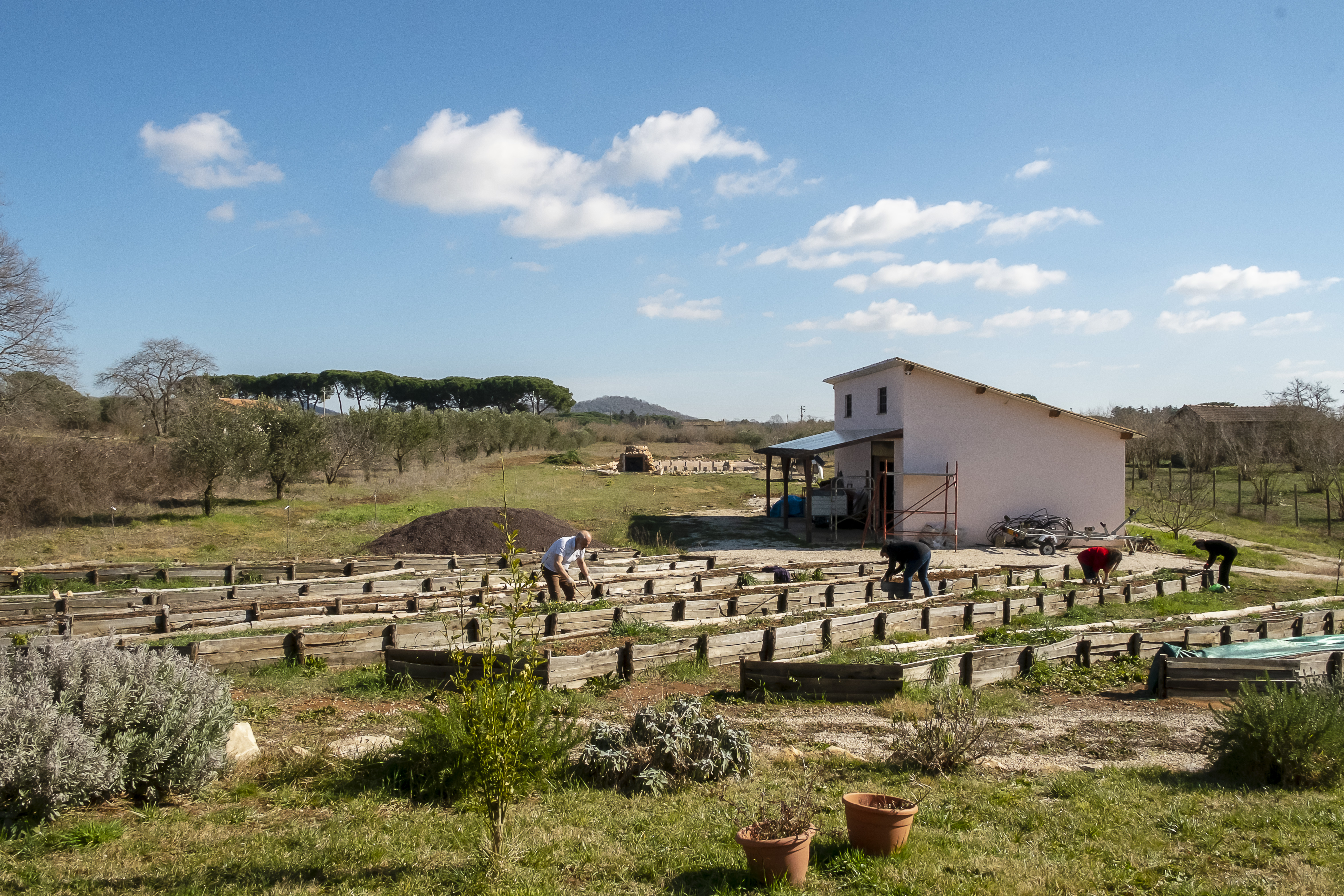 Il Giardino di Proserpina - Agricoltura Biologica - Orti-Bancali Sinergici - Preparazione - Manziana - Roma